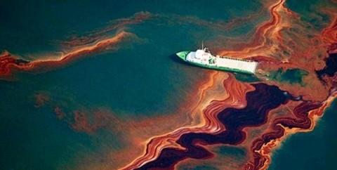 باکتری های نفت خوار